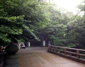 早い梅雨の瀧道